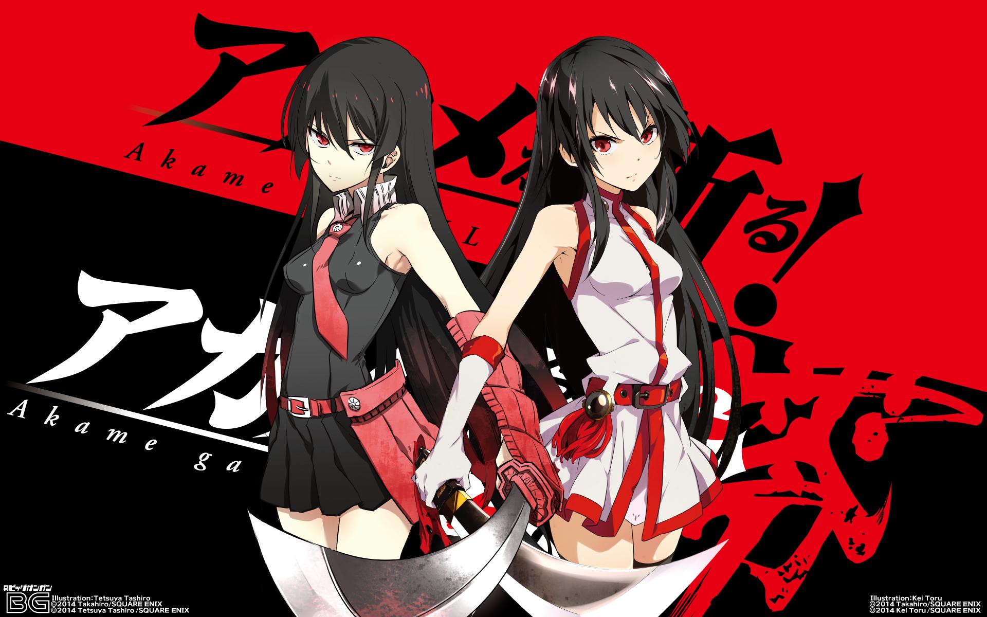 Akame Ga Kill! Banner