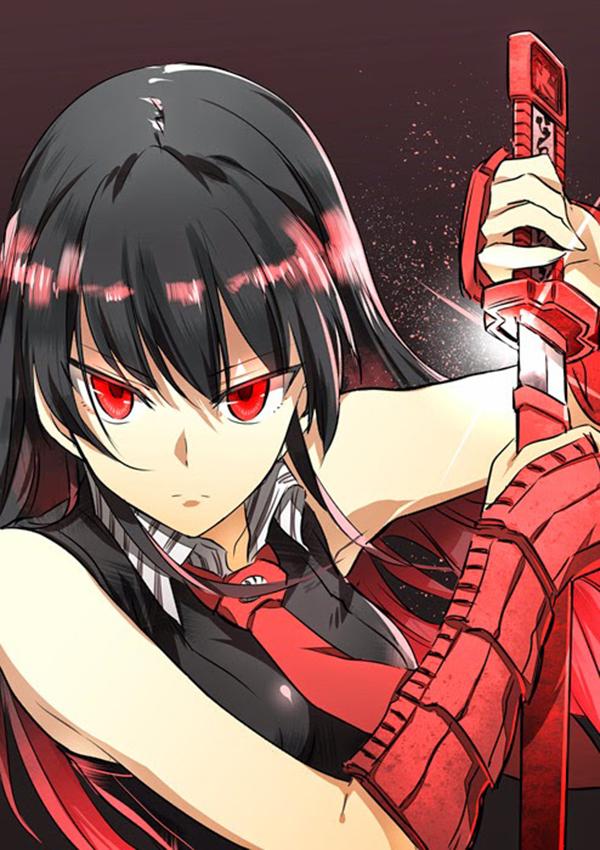 Akame Ga Kill! 2